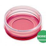 u dish-35-mm-high-bioinert