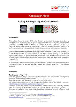 Colony Forming Assay