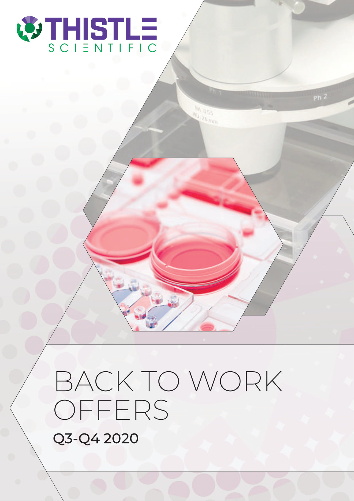Back to Work Offers